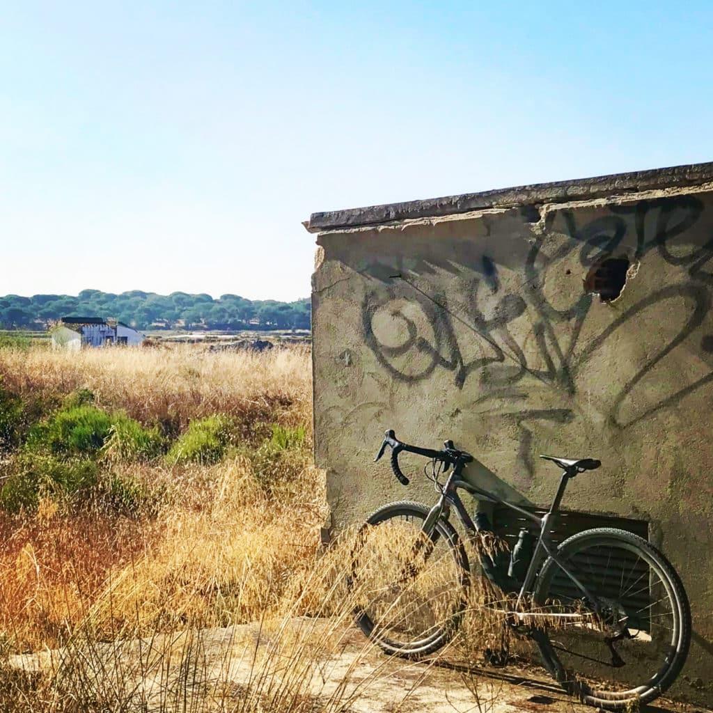 vélo gravel giant